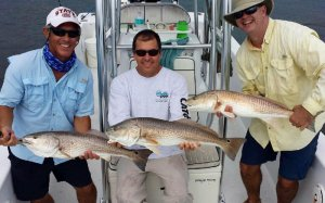 Charlotte Harbor Charters offers light tackle, backcountry and flats fishing in and around Charlotte Harbor, Boca Grande, SW Florida and Pine Island. Let Captain Mark Cowart guide you to some of the best snook, redfish, trout and tarpon fishing in Southwest Florida.